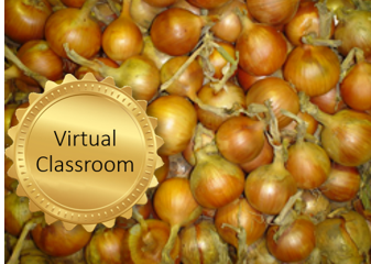 Advanced crop management of bulb onions course image